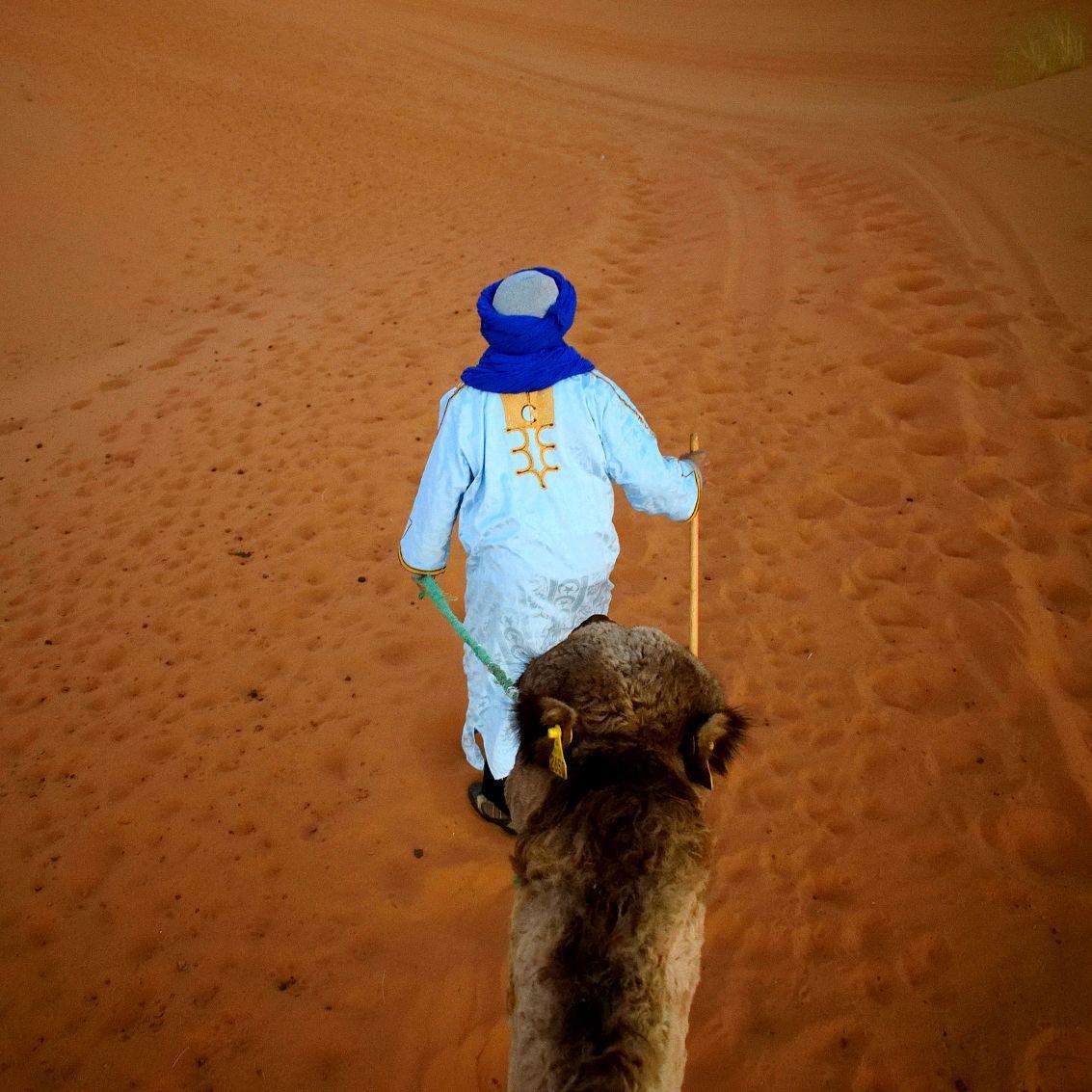 Guide touareg