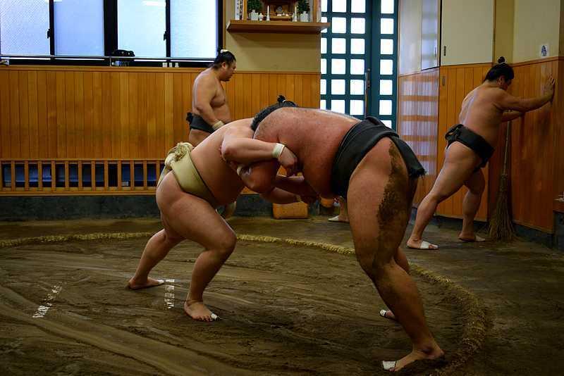 Combat de sumo