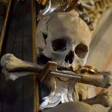crâne décoration
