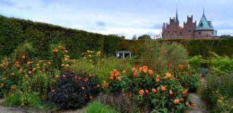 fleurs-jardin-chateau