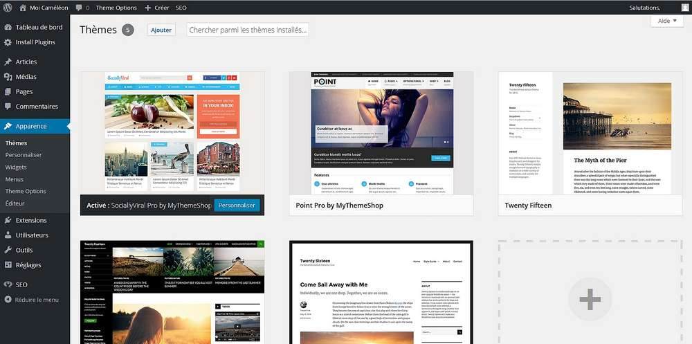 themes wordpress installation