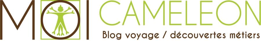moi cameleon logo