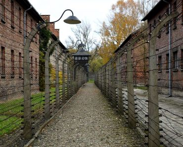 barbeles-camp-auschwitz