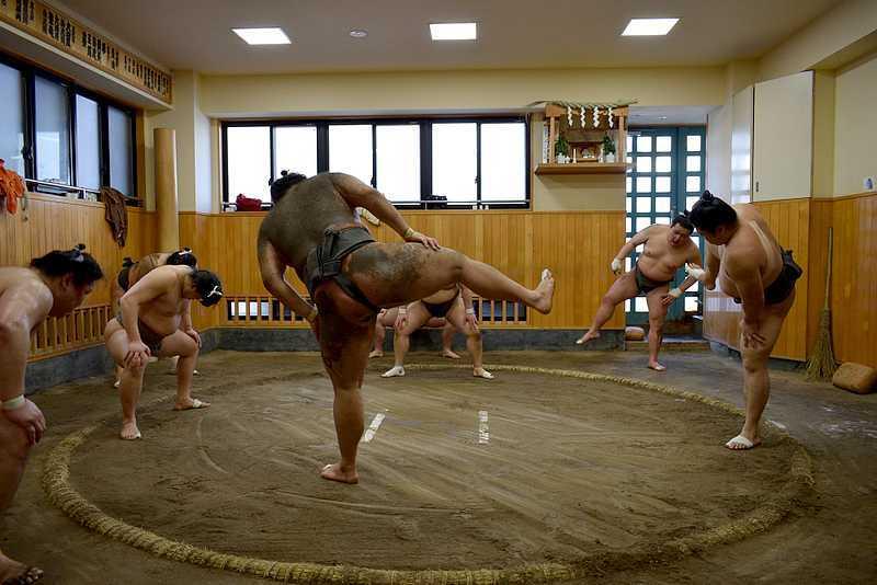 Echauffement d'un sumo