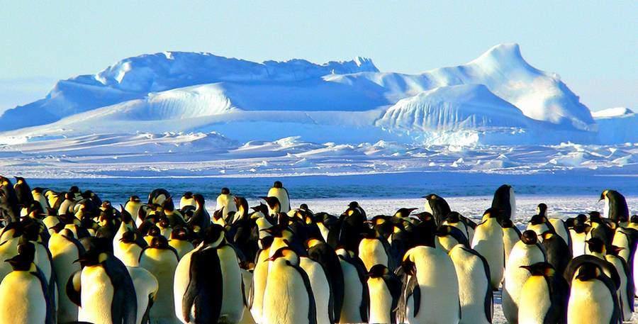 Plus beau paysage du monde en Antarctique