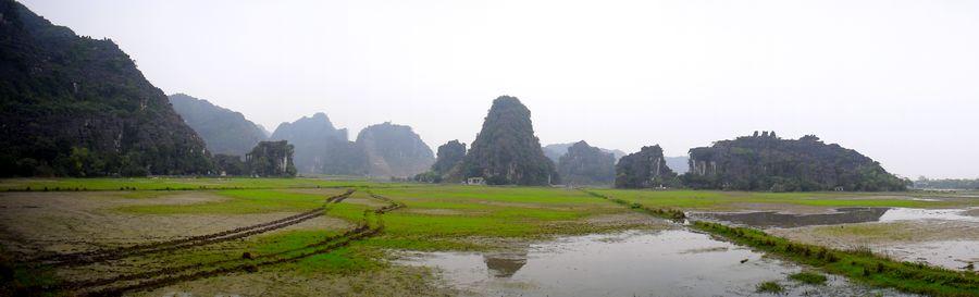 riziere vietnam