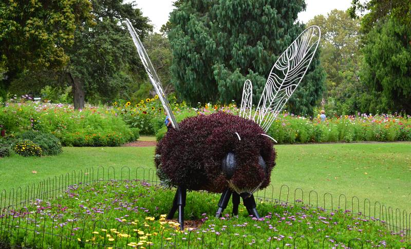 jardins botaniques royaux sydney