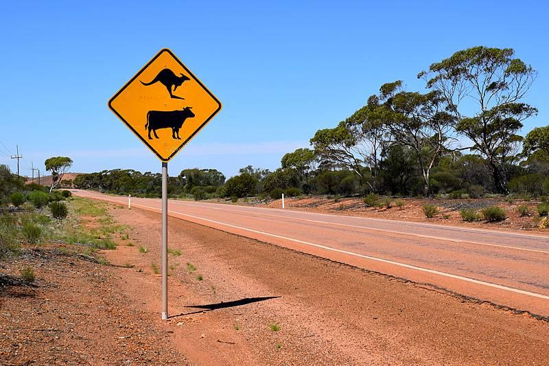 route outback bush australie