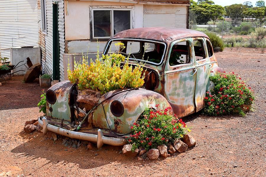 voiture fleurie
