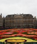 tapis de fleurs grand-place bruxelles